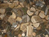 Sprzedam drewno opałowe i kominkowe.