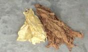 OKAZJA,liście  tytoniu od producenta!