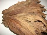 tytoń tyton liscie tytoniu 20zł/kg barley burley