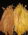 Liście tytoniu, jakość najwyższa 782-831-083
