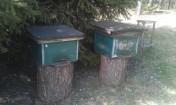 Ule...pszczoły...kupie,odbiore