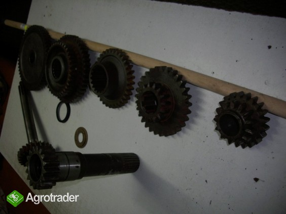 Zetor - 3011 - koła zębate skrzyni biegów - zdjęcie 2