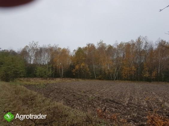 Sprzedam ziemię rolną 3.5 h pod Radomiem (Stromiec) - zdjęcie 1