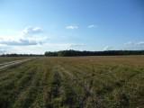 Gospodarstwo rolne- 415 hektarów