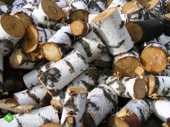 Ukraina.Trociny drzewne 4 zl/m3 + hala produkcyjna - zdjęcie 2