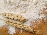 Sprzedam hurtowe ilosci mąki.