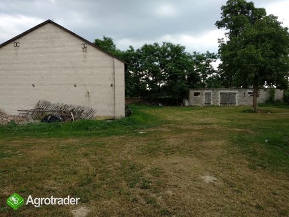 Siedlisko 13 ha z budynkami w gminie Kampinos - zdjęcie 1