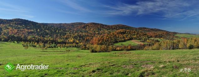 Bieszczady, Solina, 150 ha rolno-leśne - zdjęcie 3