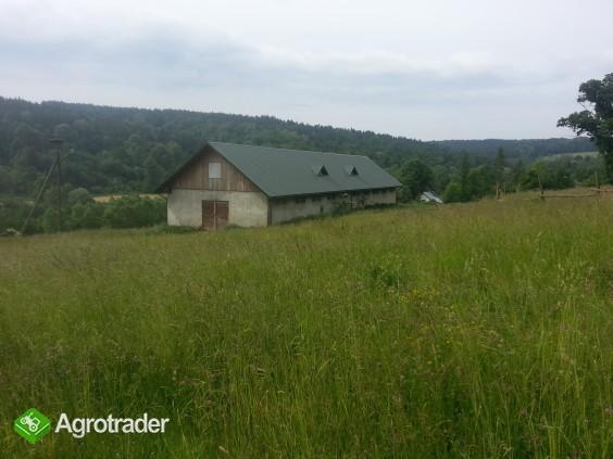 Podkarpacie, Piątkowa, okolice Arłamowa, 150 ha