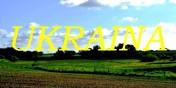 Grunty orne / gospodarstwa Ukraina