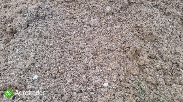 Pomiot kurzy suchy – CAŁA POLSKA