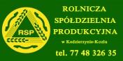 PSZENICA 100 T - SPRZEDAŻ - PARAMETRY!!!
