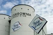 Wysłodki buraczane mokre,cukrownia Krasnystaw  2018 prosto zsypu