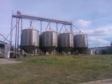 Sprzedam gospodarstwo rolne-budynki o profilu zbożowo-hodowlanym