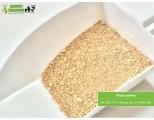 śruta sojowa GMO