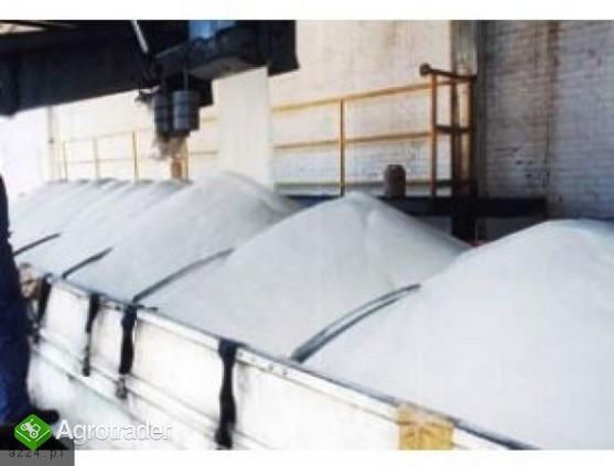 Rafinowany cukier buraczany - zdjęcie 1
