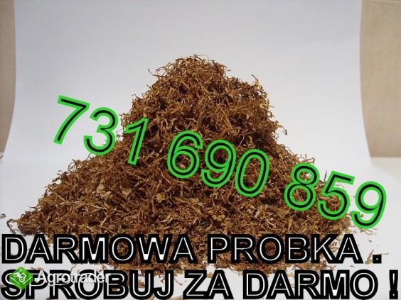Tyton Marlboro LM Camel Paramount Viceroy DARMOWE PRÓBKI SPRAWDŹ!