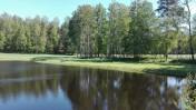 Ziemię od 0,3 ha do 3 ha k/Olsztynka blisko lasu i jezior