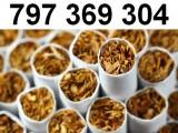 Świetnej jakości tytoń papierosowy! Tani tytoń Premium, tytoń Korsarz