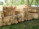 Ukraina.Wspolpraca.Drewno 15 zl/m3.Produkcja europalet, desek,biomasy