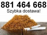 Tani tytoń papierosowy na sprzedaż. Tytoń Korsarz, Grodzki, Marlboro