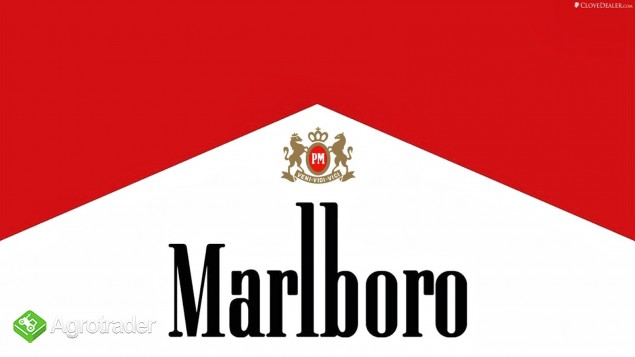 Promocja!70zl tytoń tyton,route66 marlboro camel virginia lm ld zamów