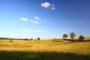 SPRZEDAM ZIEMIĘ ROLNĄ NA MAZURACH 31,72 ha