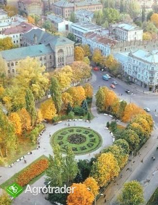 UkrainaDuzy wybor nieruchomosci rolnychZapraszamy! - zdjęcie 4