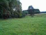 2 działki- rolną i pod budowę