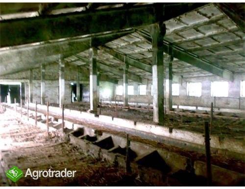 Ukraina.Gospodarstwo rolne+duze arealy ziemi.Tanio - zdjęcie 2