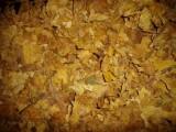 liscie tytoniu przemyslowego,liście tytoniu, tytoń