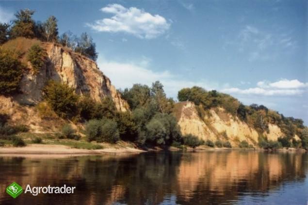 Ukraina.Gospodarstwa i grunty rolne,lesne.Tanio - zdjęcie 4